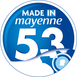 logo made in 53